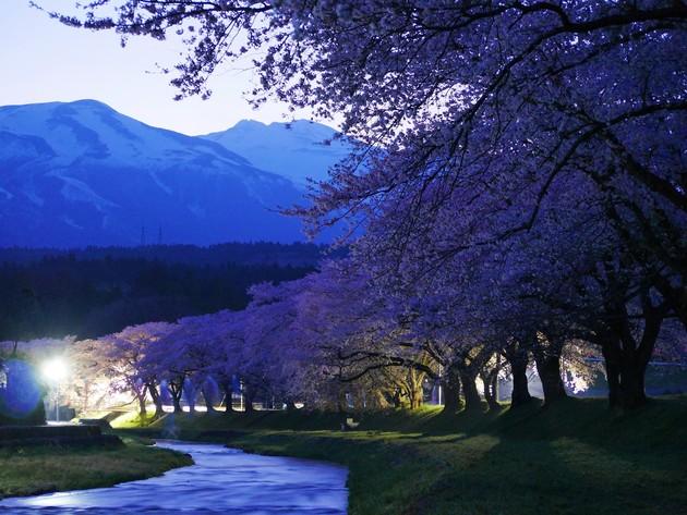 山形県遊佐町中山河川公園