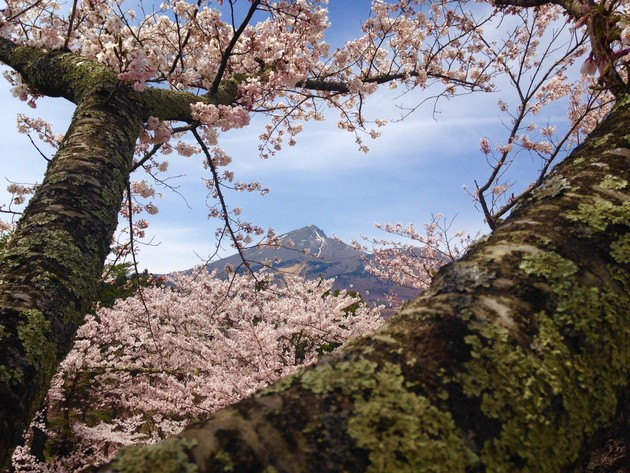 亀ヶ城跡、福島県猪苗代町