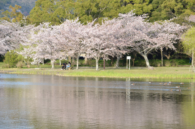 愛知県豊橋市 岩田運動公園