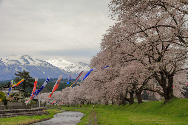 山形県:中山河川公園