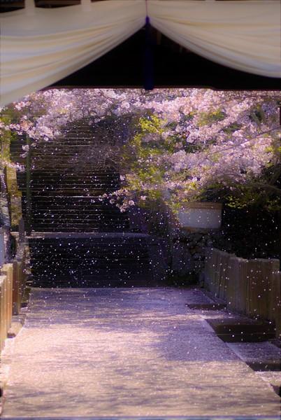 広島県福山市 常国寺