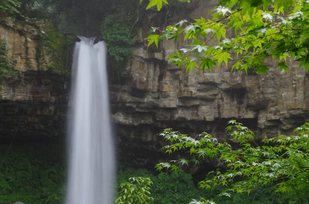 静岡県伊豆市 満城の滝
