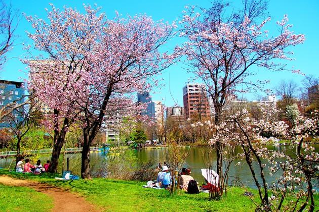 札幌市中島公園
