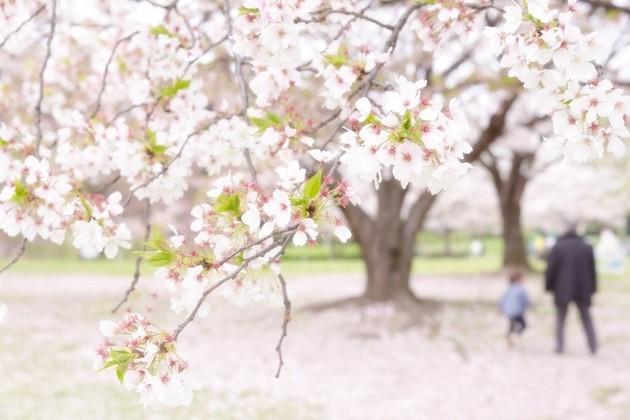 大阪府大泉緑地公園