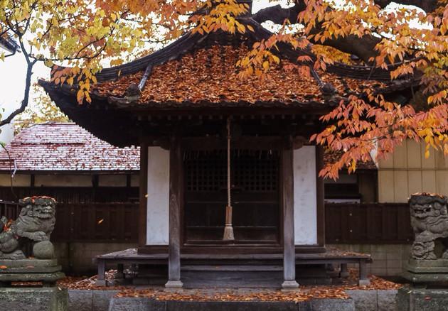 福島県、会津若松市