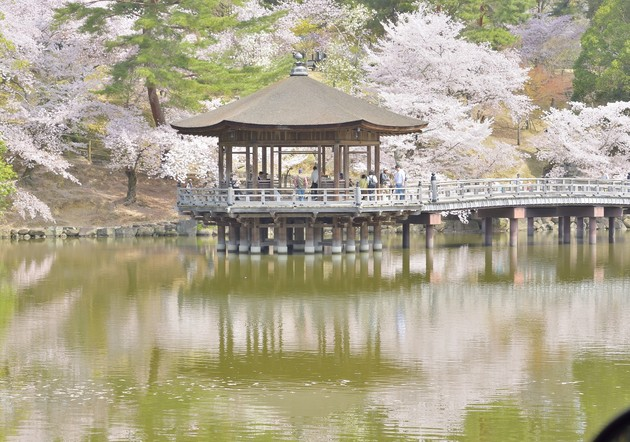 奈良公園内 浮見堂 奈良市