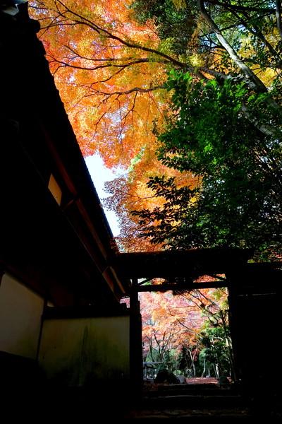 龍野城公園、兵庫県たつの市