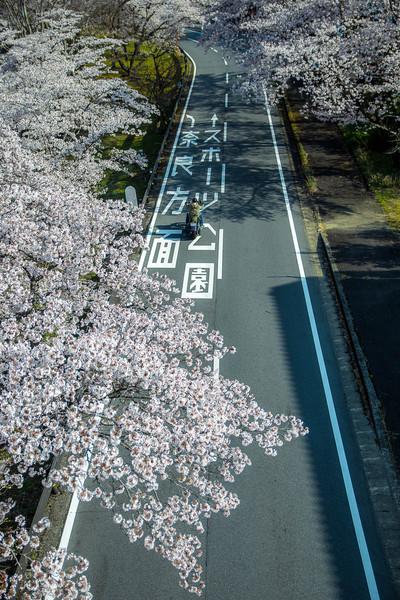 奈良県 下北山村スポーツ公園