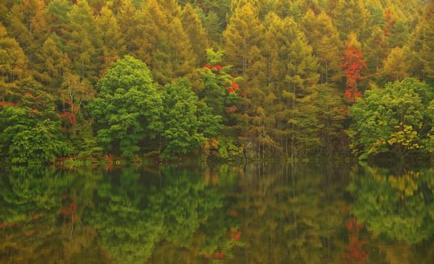 長野県  御射鹿池