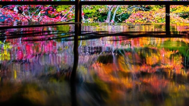 瑠璃光院、京都市左京区