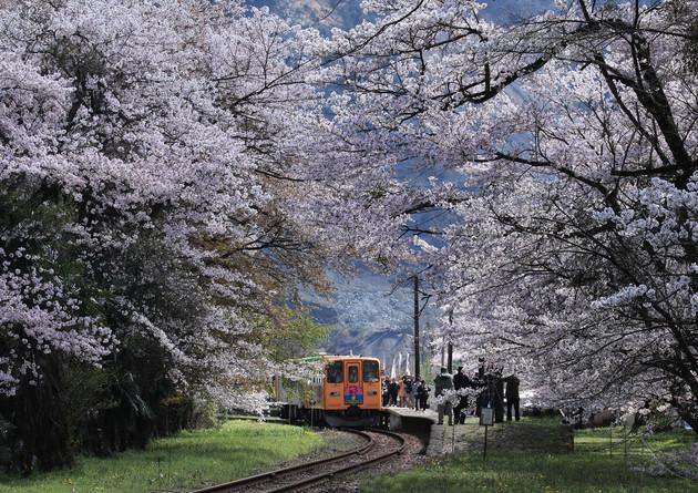 岐阜県 樽見鉄道 谷汲口駅