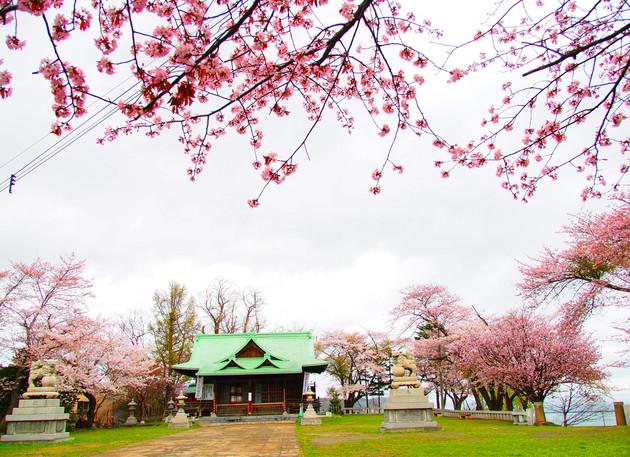 小樽市水天宮神社境内