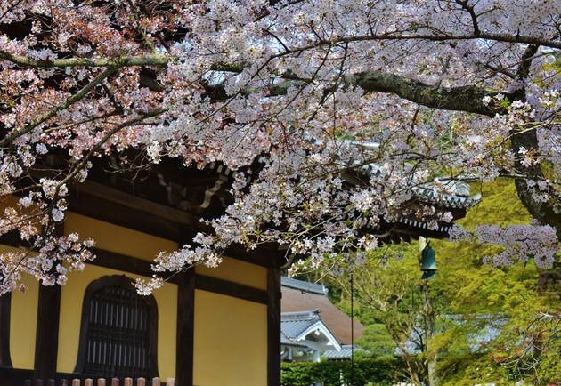 京都市 南禅寺