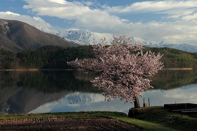 長野県青木湖畔