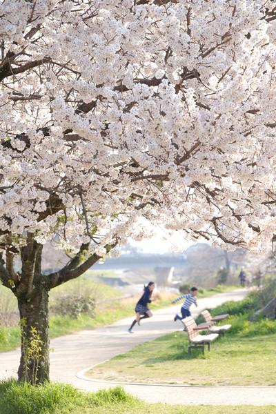 愛媛県松山市 城山公園