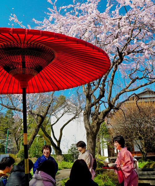 東京・江戸東京たてもの園