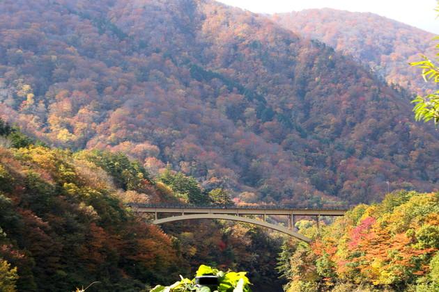 鳴子陸橋の紅葉