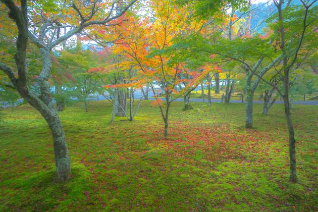 京都市左京区南禅寺