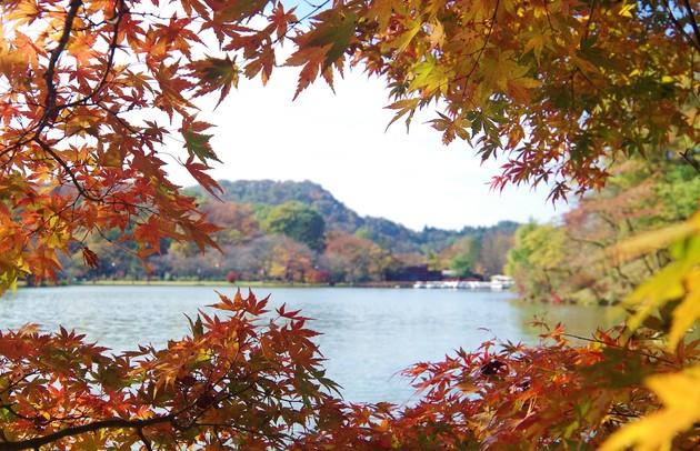 長野県軽井沢町軽井沢塩沢湖