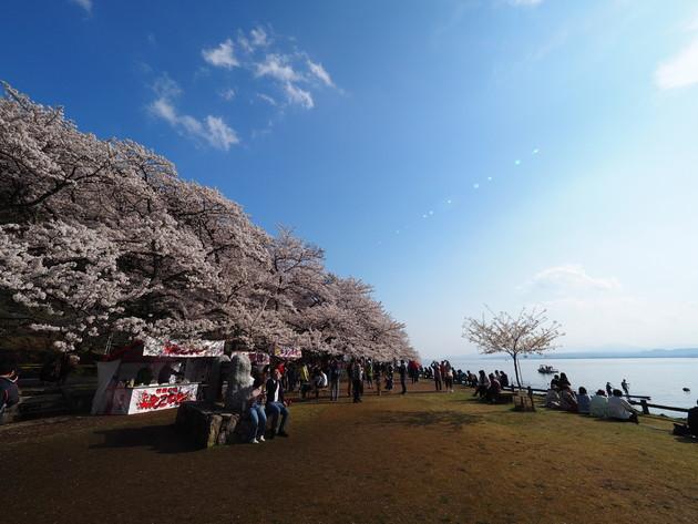 琵琶湖 海津大崎