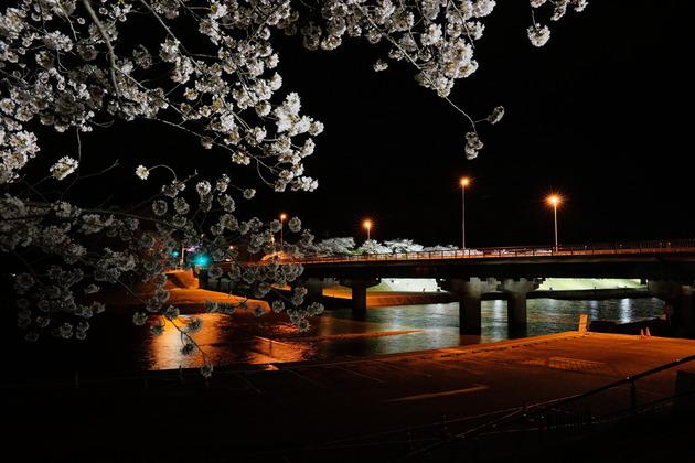 五十鈴川,三重県伊勢市
