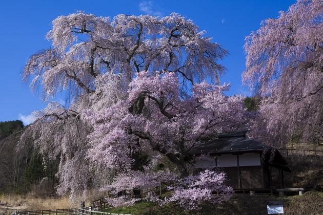 長野県の高遠町