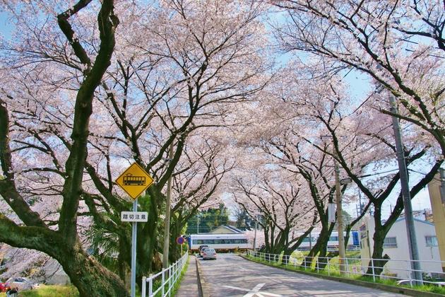 名鉄線犬山遊園駅付近の踏切