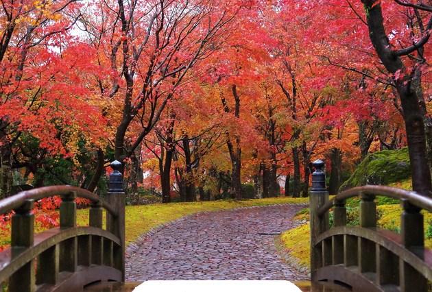 箱根 箱根美術館