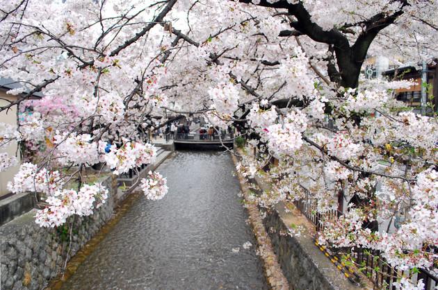 京都市中京区四条木屋町
