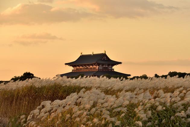 奈良市 平城宮跡 大極殿