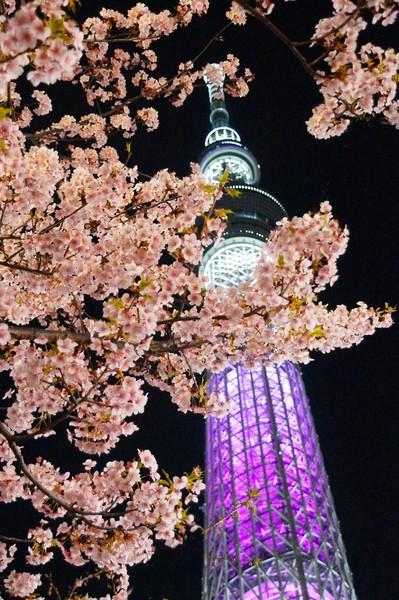 東京都墨田区業平一丁目