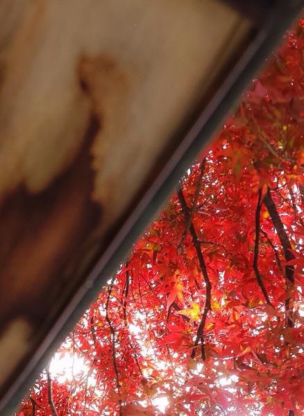 福島県、土津神社