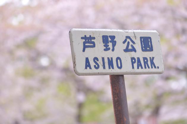 青森県五所川原市芦野公園