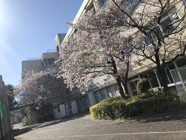 東京都杉並区、東京都立杉並工業高等学校