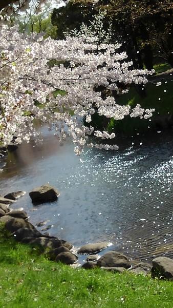 札幌 中島公園