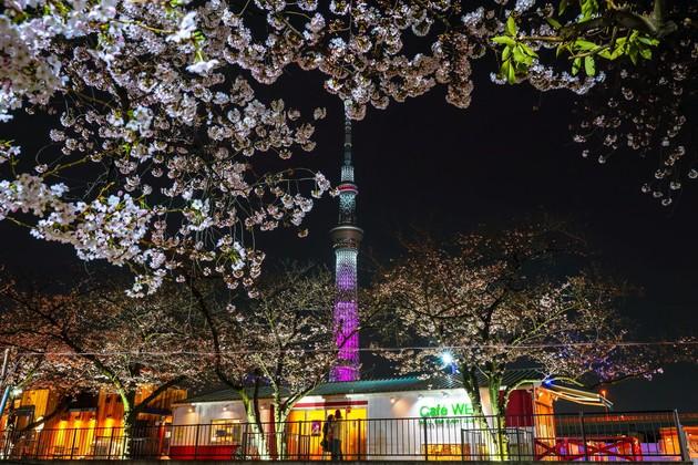 隅田公園、東京都台東区