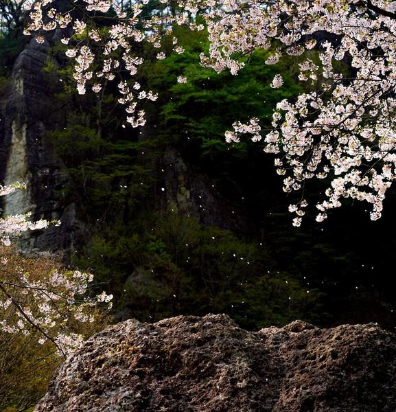 秋田県二ツ井町きみまち阪公園