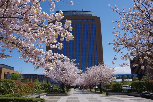 石川県県庁