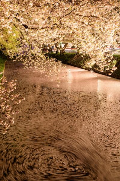 弘前公園、青森県弘前市下白銀町