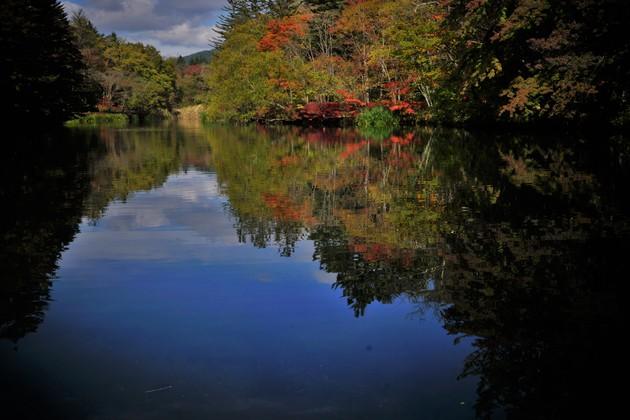 軽井沢 雲場池…長野県軽井沢町