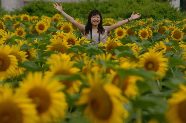 滋賀県琵琶湖なぎさ公園
