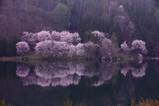長野県中綱湖