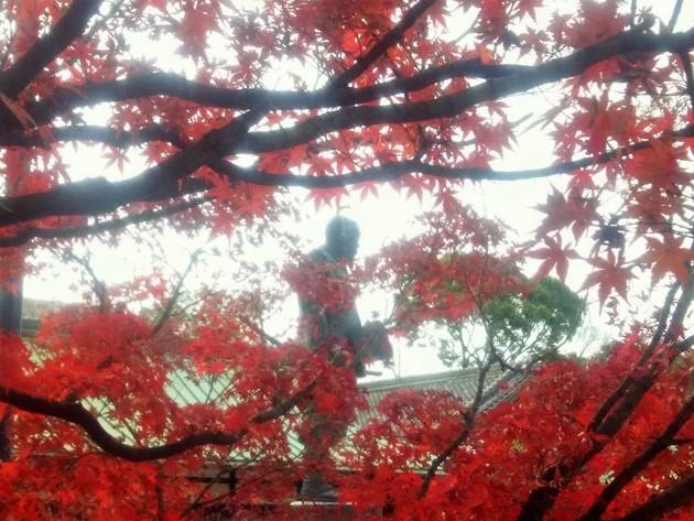 大阪城公園 豊国(ほうこく)神社 摂政関白 豊臣秀吉