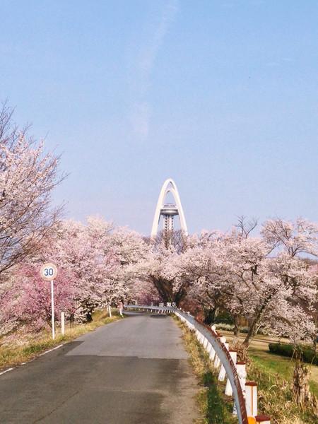 愛知県一宮市大野極楽寺公園