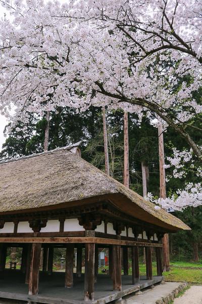 福島県、新宮熊野神社