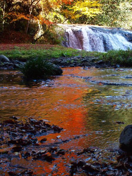 熊本小国 遊水渓