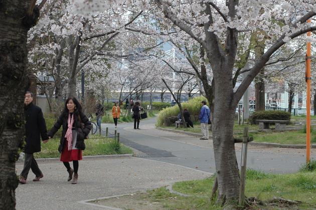 大阪 藤田邸跡公園