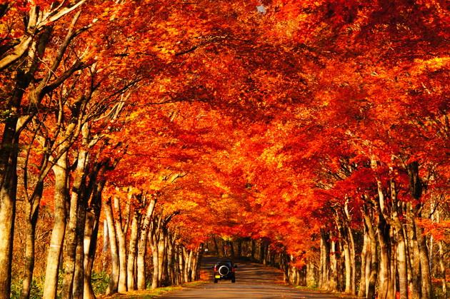 北海道清水町