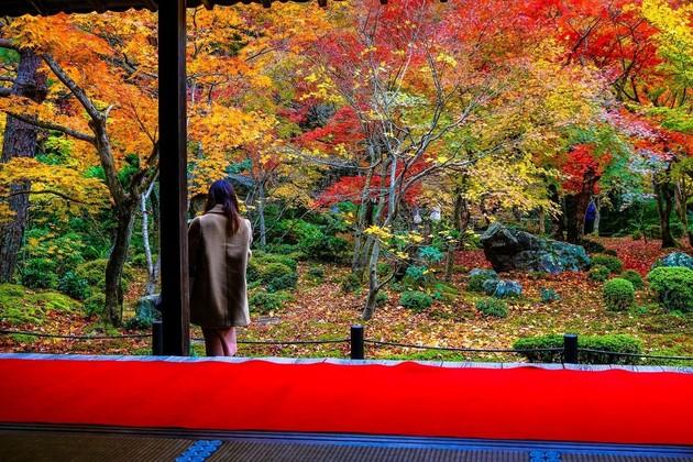 圓光寺、京都市左京区