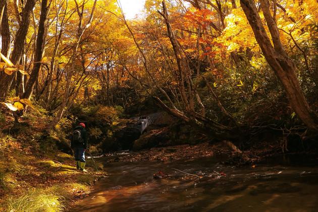 福島県、東山町